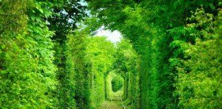 Tunelul iubirii Caras Severin