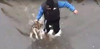 reactia unui caine salvat din apa