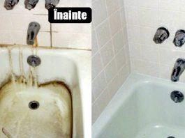 cu ce se curata cada ciuveta wc ul si gresia