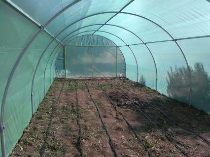 Solar de legume - Solarii Oltenia