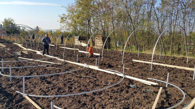 montarea unui solar de legume